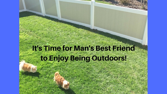 It's Time for Man's Best Friend to Enjoy Being Outdoors!